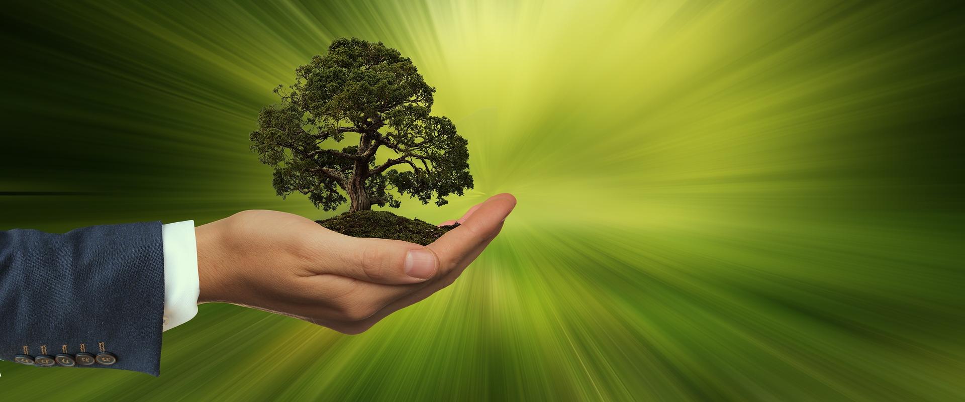 une main écologique